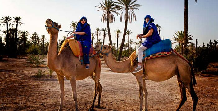 Paseo en camello en Almería